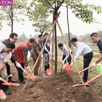 Trồng thêm 1000 cây hoa anh đào tại Hà Nội
