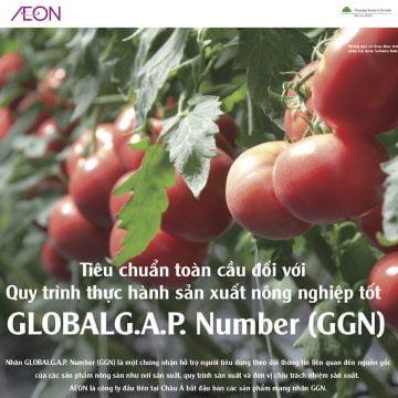Tiêu chuẩn toàn cầu quy trình thực hành sản xuất nông nghiệp Global GAP Number (GGN)